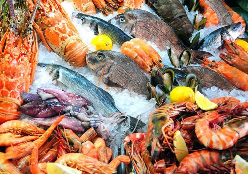 fish-and-seafood-delivery-luxury-experiences-on-lefkada-cover-photo