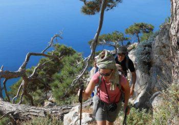 mountain-walking-tours-luxury-experiences-in-sivota-cover-photo