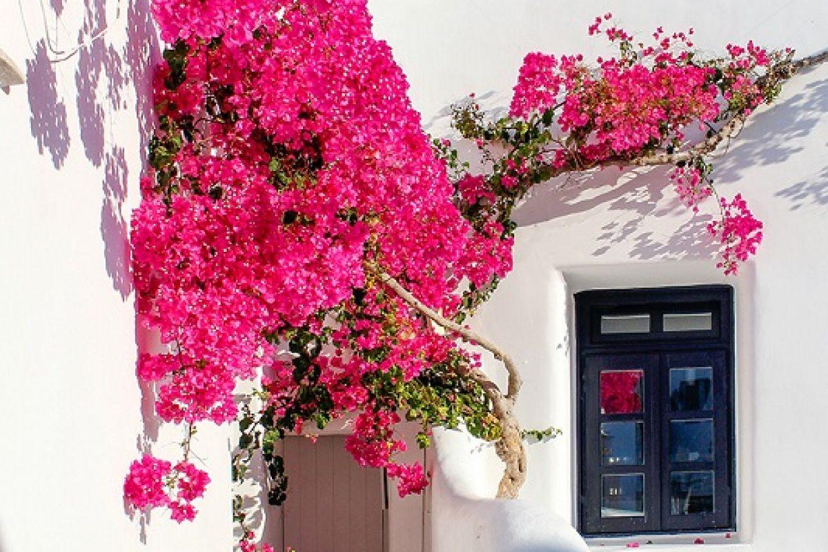 enquiry luxury villa in greece