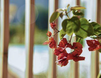 villa-mouria-paleros-greece-flower-design